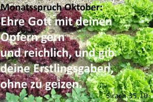 Im Oktober wird die Ernte abgeschlossen. Die Sätze aus dem buch Jesus Sirach erinnern daran, dass Gottes Gaben allen gehören.
