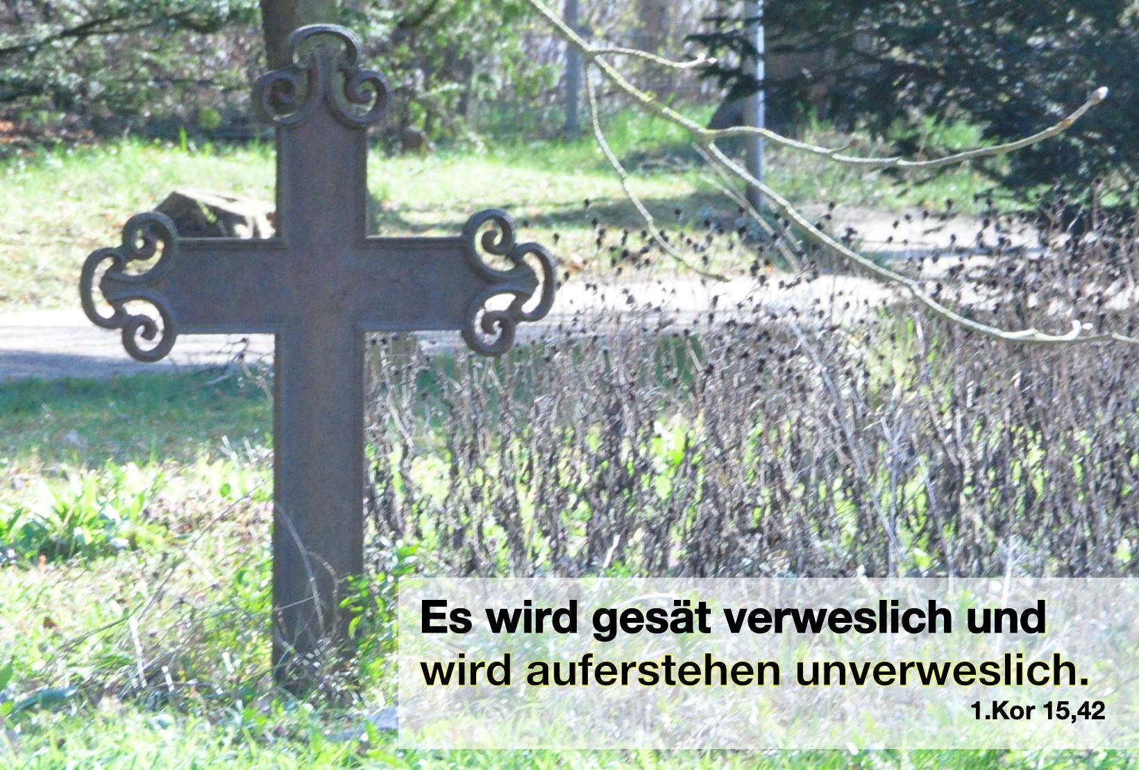 Es wird gesät verweslich und wird auferstehen unverweslich.  1.Kor 15,42